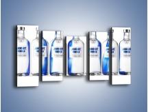 Obraz na płótnie – Czysta wódka w butelkach – pięcioczęściowy JN748W2