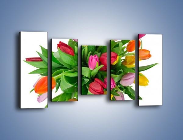 Obraz na płótnie – Wiązanka kolorowych tulipanów – pięcioczęściowy K019W2