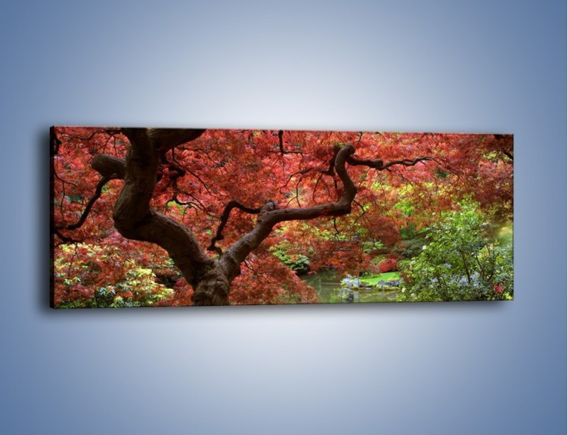 Obraz na płótnie – Pejzaż jak w raju – jednoczęściowy panoramiczny KN069