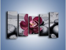 Obraz na płótnie – Bordowy storczyk i ciemne towarzystwo – pięcioczęściowy K156W2