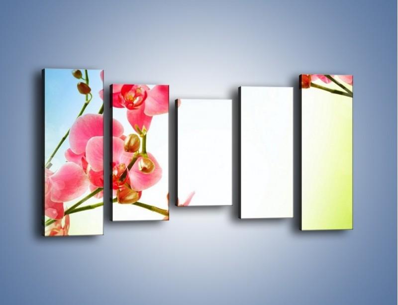 Obraz na płótnie – Akcent kwiatowy – pięcioczęściowy K268W2