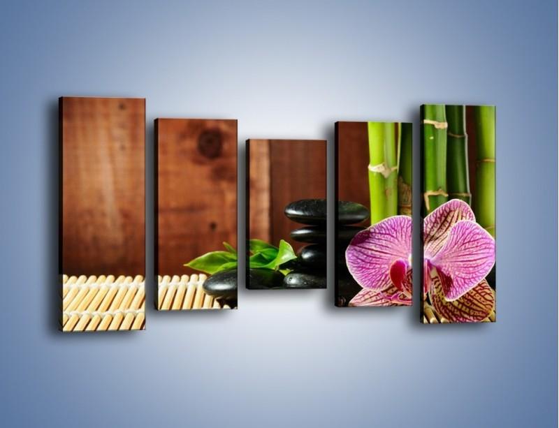 Obraz na płótnie – Bambus storczyk i kamienie – pięcioczęściowy K279W2