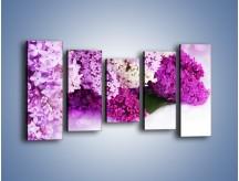 Obraz na płótnie – Bez w różnych kolorach – pięcioczęściowy K389W2