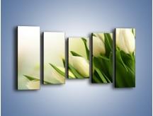 Obraz na płótnie – Białe tulipany na zgodę – pięcioczęściowy K400W2