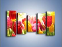 Obraz na płótnie – Bajecznie słoneczne tulipany – pięcioczęściowy K428W2