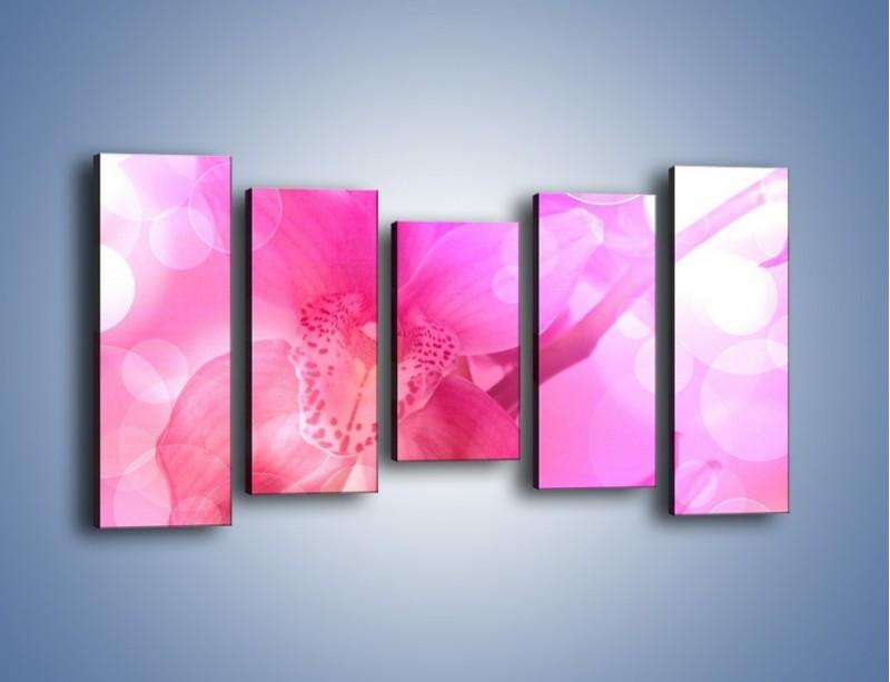 Obraz na płótnie – Budzący dzień w różowym kwiecie – pięcioczęściowy K487W2