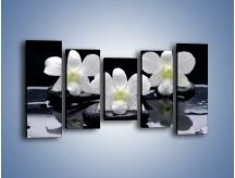 Obraz na płótnie – Biel w kwiecie nocą – pięcioczęściowy K512W2