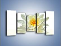 Obraz na płótnie – Biel z pomarańczą w kwiecie – pięcioczęściowy K674W2