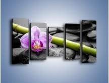 Obraz na płótnie – Bambus czy storczyk – pięcioczęściowy K686W2