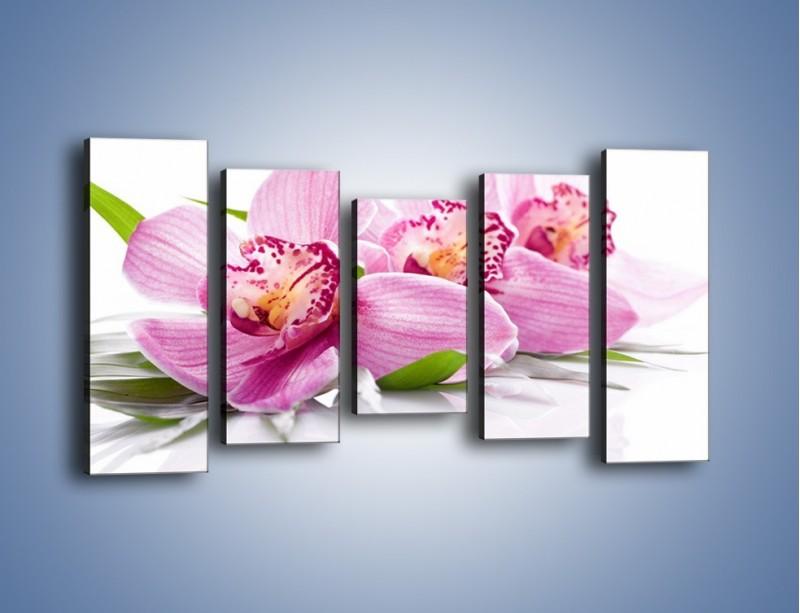 Obraz na płótnie – Biały kwiatowy stół – pięcioczęściowy K688W2