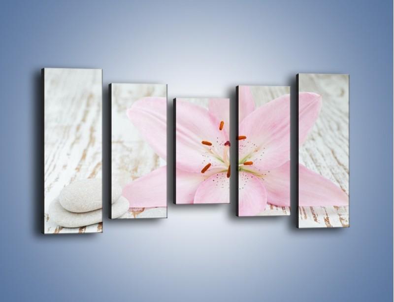 Obraz na płótnie – Cała słodycz w lilii – pięcioczęściowy K727W2