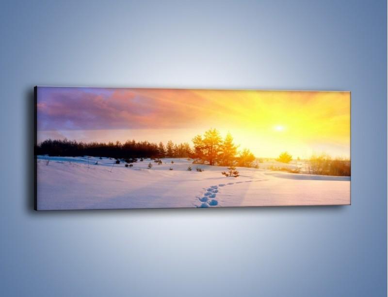 Obraz na płótnie – Ślady na śnieżnym puchu – jednoczęściowy panoramiczny KN1015