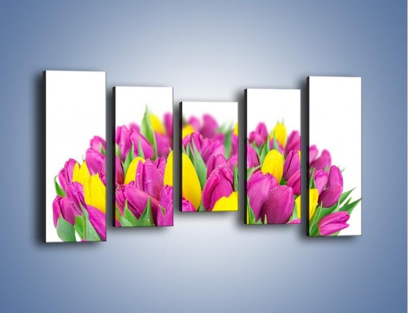 Obraz na płótnie – Bukiet fioletowo-żółtych tulipanów – pięcioczęściowy K778W2