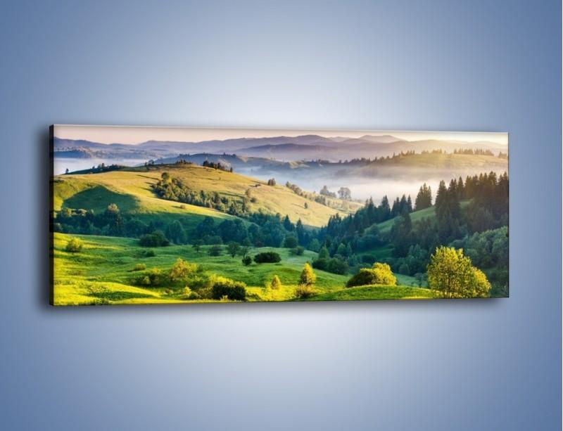 Obraz na płótnie – Górska polana z lotu ptaka – jednoczęściowy panoramiczny KN1016