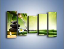 Obraz na płótnie – Bambus i źródło wody – pięcioczęściowy K930W2