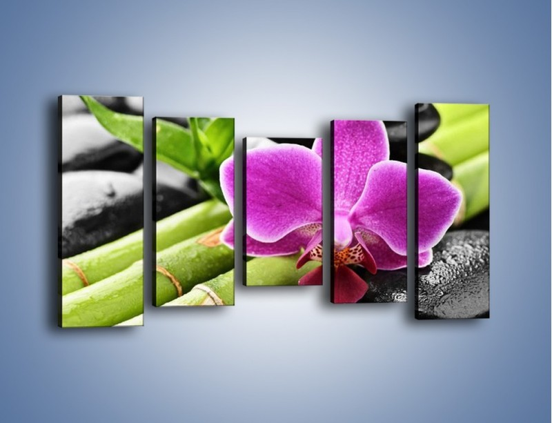 Obraz na płótnie – Idealnie ułożony kwiat – pięcioczęściowy K931W2