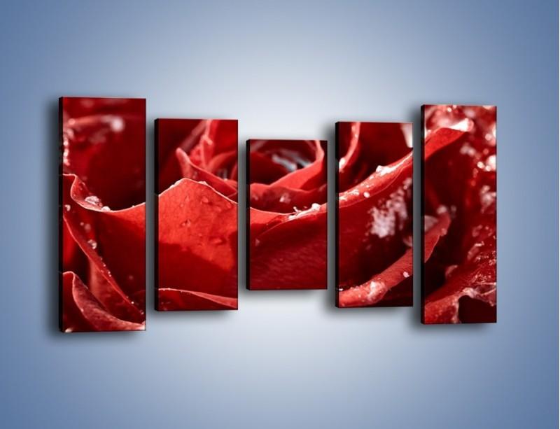Obraz na płótnie – Chłód w różanych płatkach – pięcioczęściowy K932W2