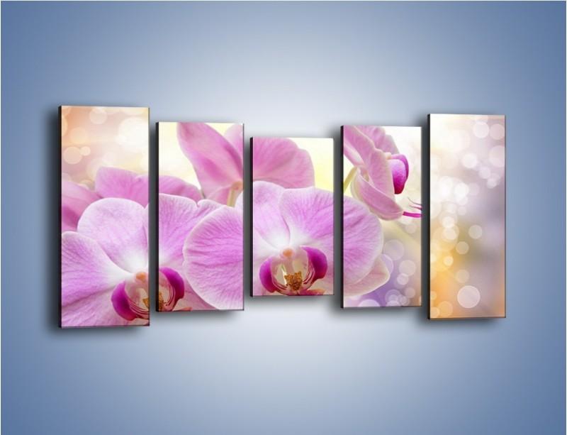 Obraz na płótnie – Lila kwiaty o poranku – pięcioczęściowy K976W2