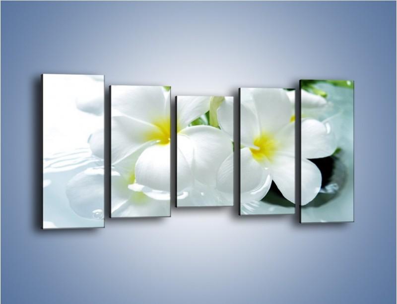 Obraz na płótnie – Białe kwiaty w potoku – pięcioczęściowy K991W2