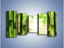 Obraz na płótnie – Bambusowe liście i łodygi – pięcioczęściowy KN027W2