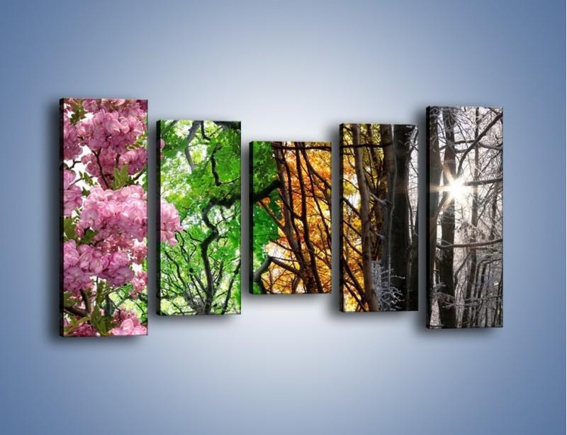 Obraz na płótnie – Drzewa w różnych kolorach – pięcioczęściowy KN037W2