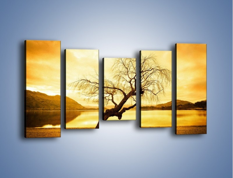Obraz na płótnie – Pochylone drzewo w sepii – pięcioczęściowy KN1033W2
