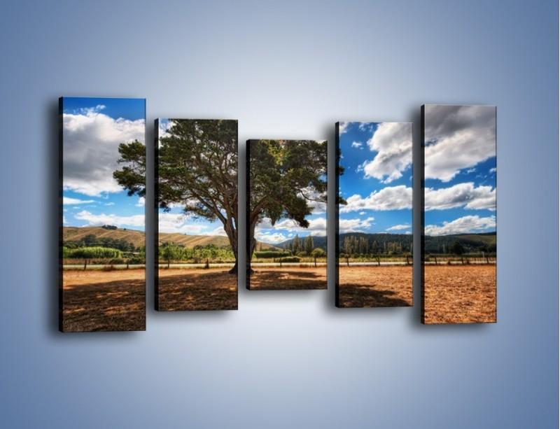 Obraz na płótnie – Cień pod rozłożystym drzewem – pięcioczęściowy KN1037W2