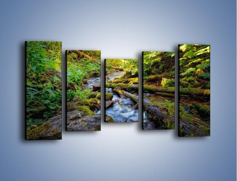 Obraz na płótnie – Drewno ścięte do wody – pięcioczęściowy KN1059W2