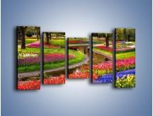 Obraz na płótnie – Aleje kolorowych tulipanów – pięcioczęściowy KN1079W2