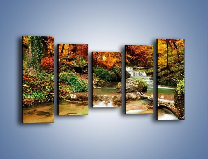 Obraz na płótnie – Jesienne kolory w lesie – pięcioczęściowy KN1094AW2