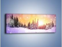 Obraz na płótnie – Pada pada śnieg – jednoczęściowy panoramiczny KN1027