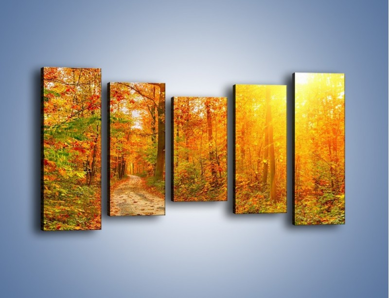 Obraz na płótnie – Leśną drużką jesienią – pięcioczęściowy KN1163AW2