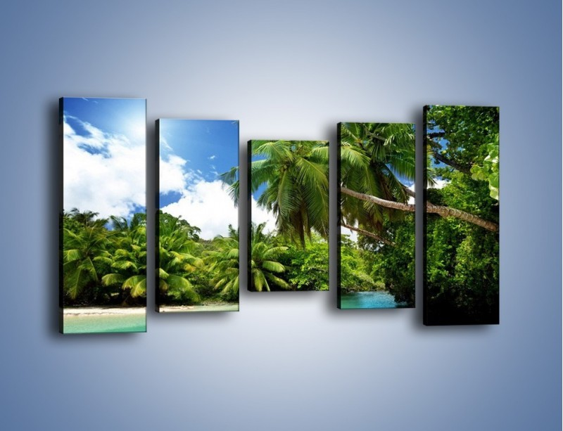 Obraz na płótnie – Rozłożone palmy i woda – pięcioczęściowy KN1168AW2