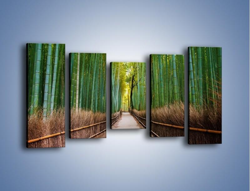 Obraz na płótnie – Bambusowy las – pięcioczęściowy KN1187AW2