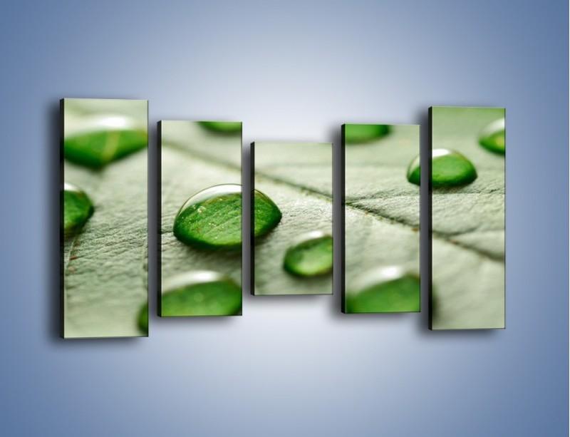 Obraz na płótnie – Korale z kropli wody – pięcioczęściowy KN1192AW2