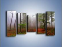 Obraz na płótnie – Budzący się lasek – pięcioczęściowy KN1285AW2
