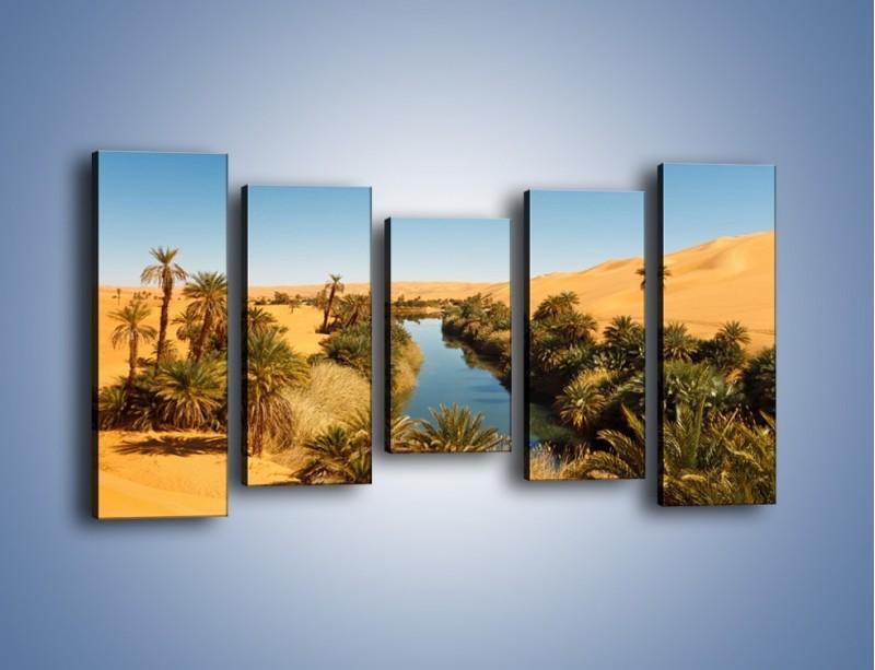 Obraz na płótnie – Woda woda na pustyni – pięcioczęściowy KN1294AW2