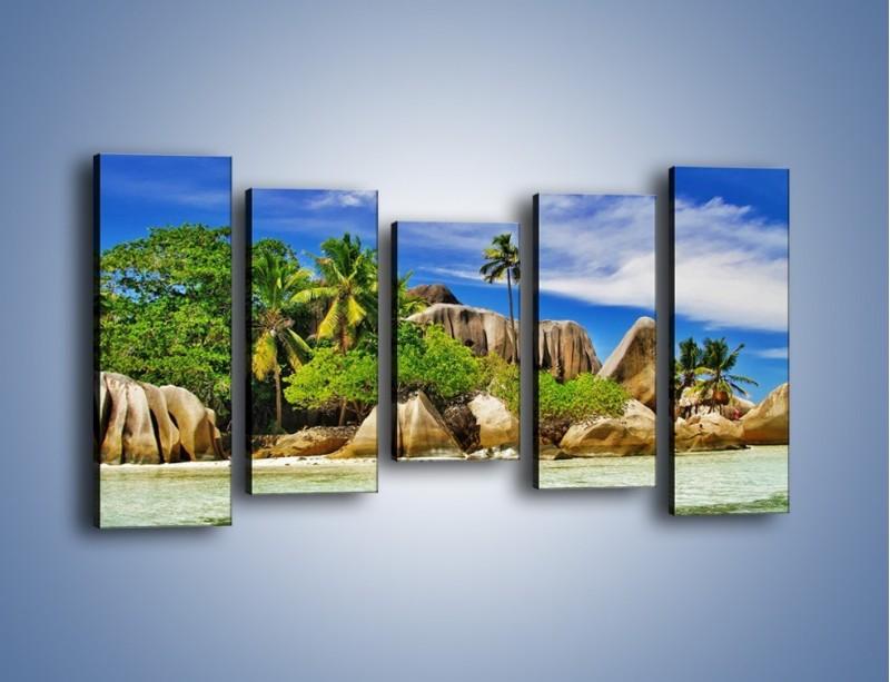 Obraz na płótnie – Tropiki i ich wysokości – pięcioczęściowy KN1306AW2