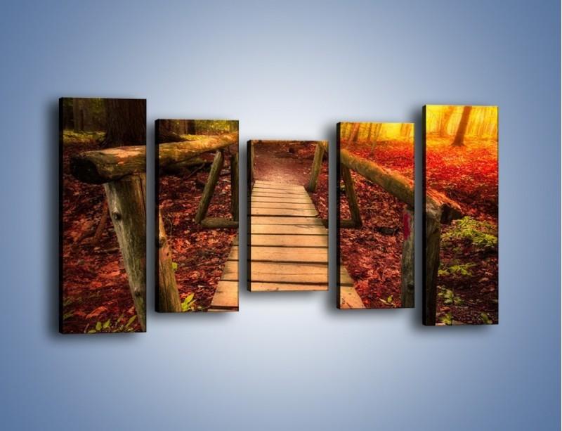 Obraz na płótnie – Krótkie przejście przez las – pięcioczęściowy KN1330AW2