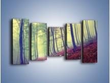 Obraz na płótnie – Bardzo wąską ścieżką leśną – pięcioczęściowy KN1335AW2