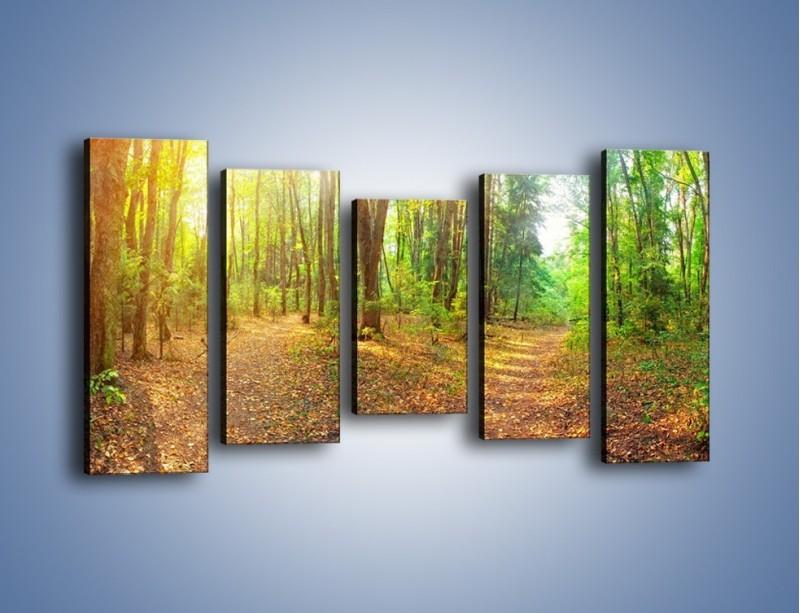 Obraz na płótnie – Przejrzysty piękny las – pięcioczęściowy KN1344AW2
