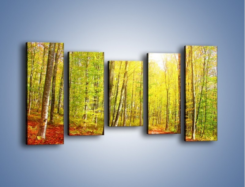 Obraz na płótnie – Brzózki liście i las – pięcioczęściowy KN1345AW2
