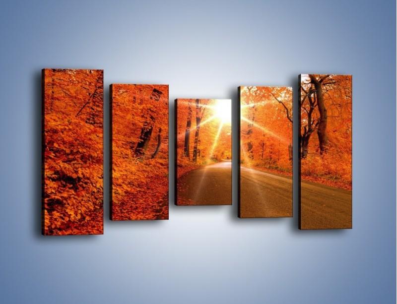 Obraz na płótnie – Droga pełna słońca – pięcioczęściowy KN160W2