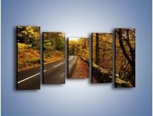 Obraz na płótnie – Asfaltową droga przez las – pięcioczęściowy KN169W2
