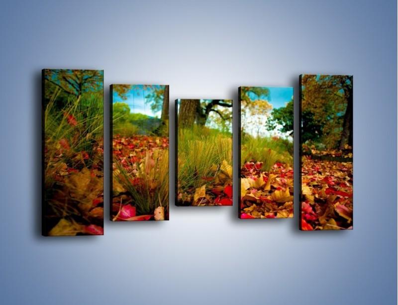 Obraz na płótnie – Droga usłana liśćmi – pięcioczęściowy KN172W2