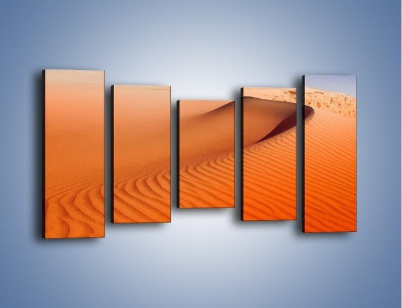 Obraz na płótnie – Pustynny żar – pięcioczęściowy KN305W2