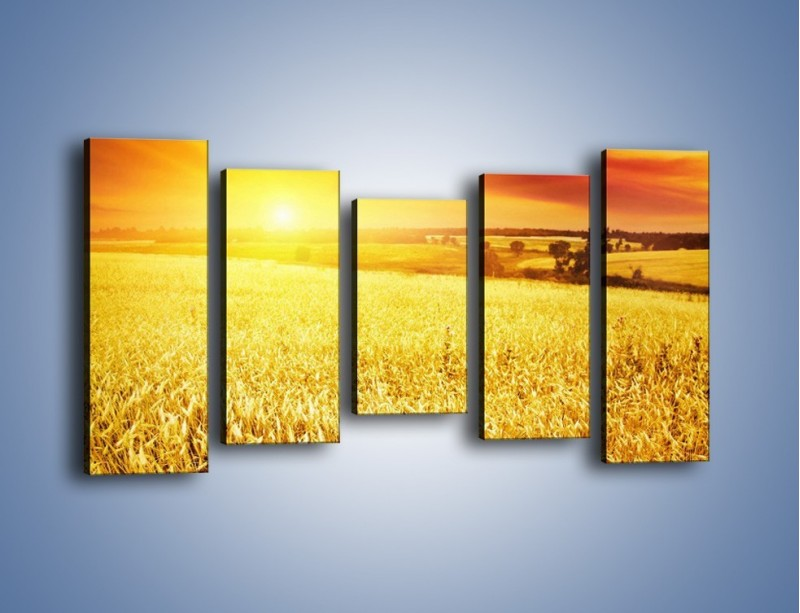 Obraz na płótnie – Zboże złote jak słońce – pięcioczęściowy KN398W2