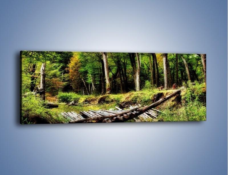 Obraz na płótnie – Brak przejścia na druga stronę – jednoczęściowy panoramiczny KN1040