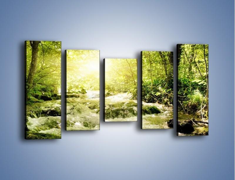 Obraz na płótnie – Wzburzony potok leśny – pięcioczęściowy KN508W2