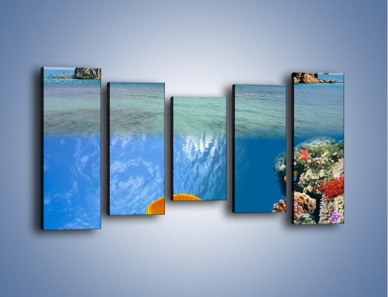 Obraz na płótnie – Podwodny świat na wyspie – pięcioczęściowy KN586W2